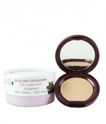 Fruit Pigmented®  Tuhý korektor Long Last Concealer